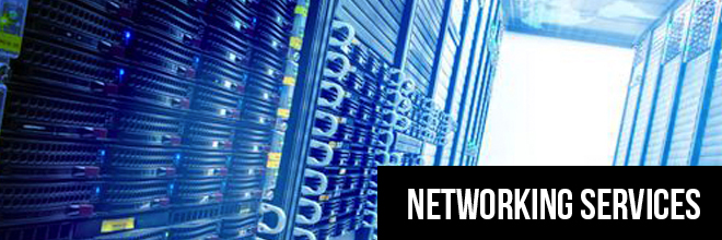 networking-services